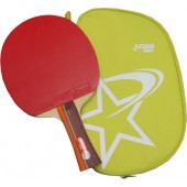 Ракетка для настольного тенниса DHS R2002